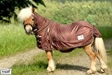 Ekzemerdecke Ekzemer Decke Fliegendecke mit Halsteil Minisehtty Shetty Isi Pony 60 65 70 75 80 85 90 95 100 115 ...