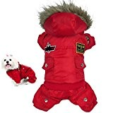 Warme Winter Hund-Mantel-Jacke USA AIR FORCE wasserdichte Haustier hoody Kleidung, Red-M