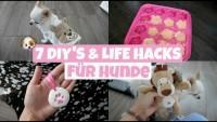 COOLE DIY'S UND LIFE HACKS FÜR HUNDE