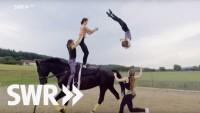 Kein Tag ohne Pferde: die Schlumbohms